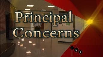 I've Got Issues:  Principal Concerns