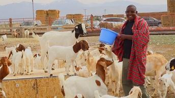 Spotlight: East African Goat Project
