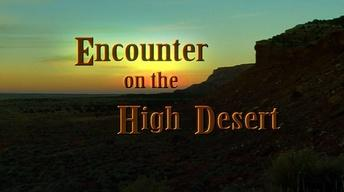 Encounter on the High Desert