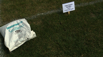 Organic Turf Fertilizer, A Common Summer Turf Disease