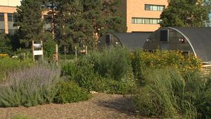 Lauritzen Gardens Omaha & New Conservatory
