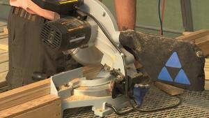 Building a Compost Bin and Emerald Ash Borer