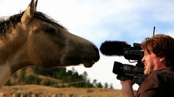 Black Hills Wild Horse Sanctuary Revisited