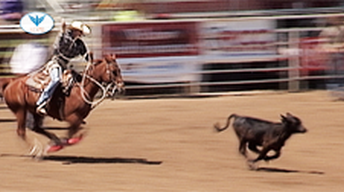 2012 High School Rodeo