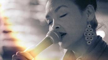 Jeni Fleming Acoustic Trio