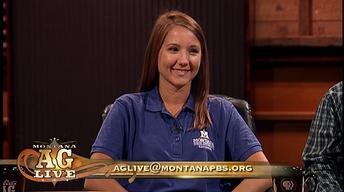 Montana's Livestock Industry  (No. 4401)