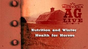 Nutrition and Winter Health for Horses (No. 3201)