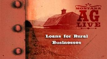 Loans for Rural Businesses (No. 3202)