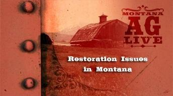Restoration Issues in Montana (No. 3203)