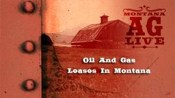 Oil and Gas Leases in Montana (No. 3901)