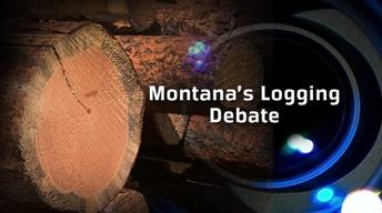 Montana's Logging Debate (No. 701)