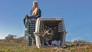 Fresno Wildlife Rescue and Rehabilitation Center