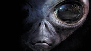 Sanger High: Alien Life