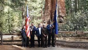 Grant Tree Veterans Day