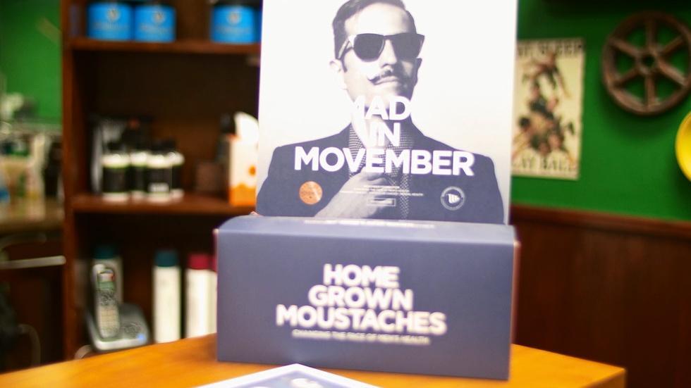 Movember 2014 image