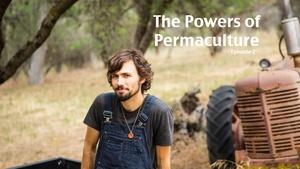 Permaculture: Perennializing Your Garden