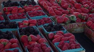 El Paseo Farmer's Market in Fresno
