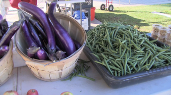 CCROPP Burroughs School Farm Stand
