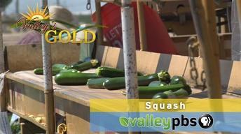 Episode 9: Squash