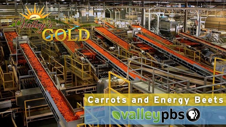 Episode 13: Energy Beets & Carrots