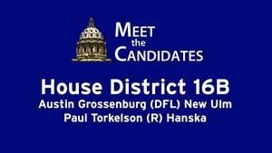 House District 16B (2016)