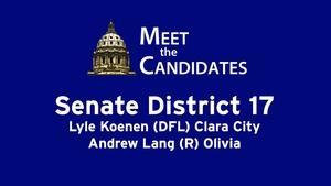 Senate District 17 (2016)