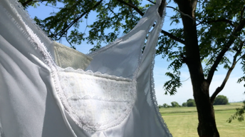 Poems from the Field: The Camisole