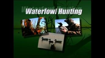 On the Hunt: Duck, Goose and Deer