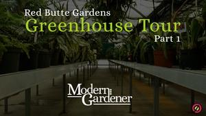 Red Butte Garden Greenhouse Tour