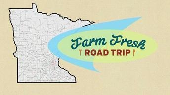 Farm Fresh Road Trip 4