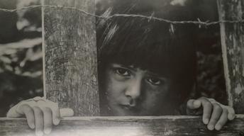 Chris Rodarte Photo Exhibit