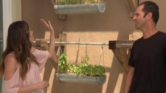 Vertical Raised Garden & Met Salad