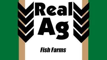 RealAg Fish Farms (Ep607)