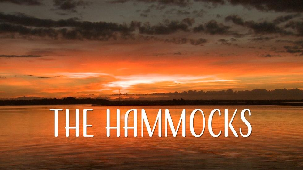 The Hammocks image