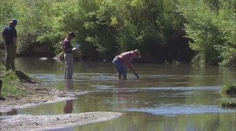 Marsh Creek Mud Mystery