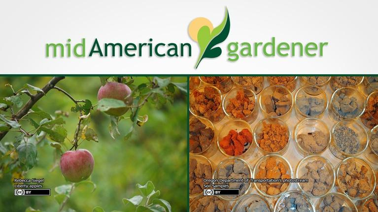 Mid-American Gardener: Mid-American Gardener with Sandy Mason December 14, 2017