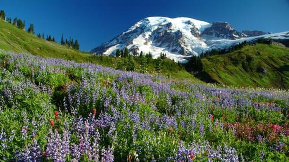 Ken Burns: The National Parks image