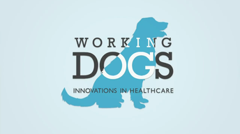 Working Dogs: Innovations in Healthcare