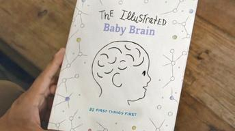 First Things First: Early Childhood Brain Development