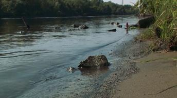 DEC Rejects EPA Review of Hudson River Cleanup