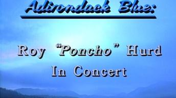 Adirondack Blue: Poncho