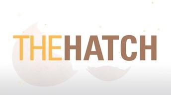 The Hatch: Student Entrepreneurs Taking Flight
