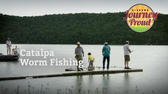 Catalpa Worm Fishing