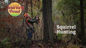 Squirrel Hunting