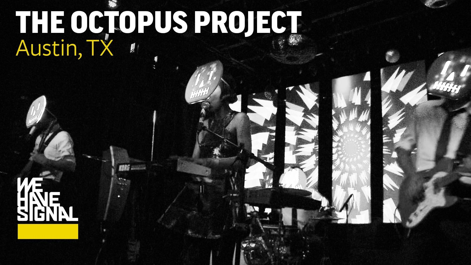 octopus project Octopus project, an all instrumental and mostly electronic trio (josh lambert,  toto miranda, yvonne lambert) hailing from austin (texas), concocted an  unlikely.