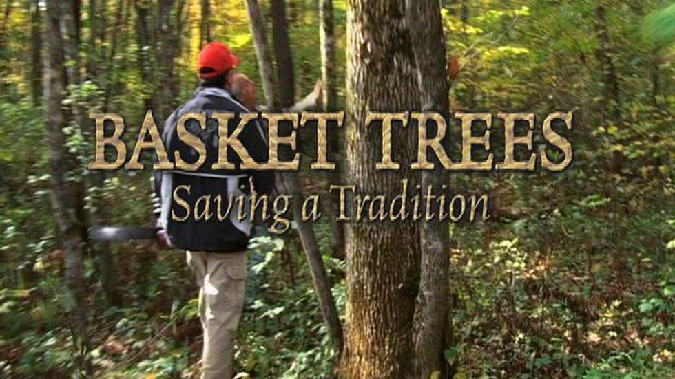 Basket Trees - Saving a Tradition image