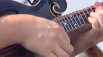 Katie Laur, Bluegrass Musician