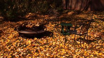 Roadside Adventures - Autumn Tome