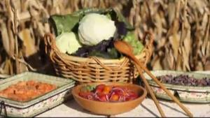 Harvest Moon Malfouf - Middle Eastern Cabbage Creations