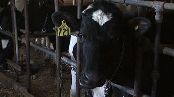 06-25-13: Farm Bill Fails